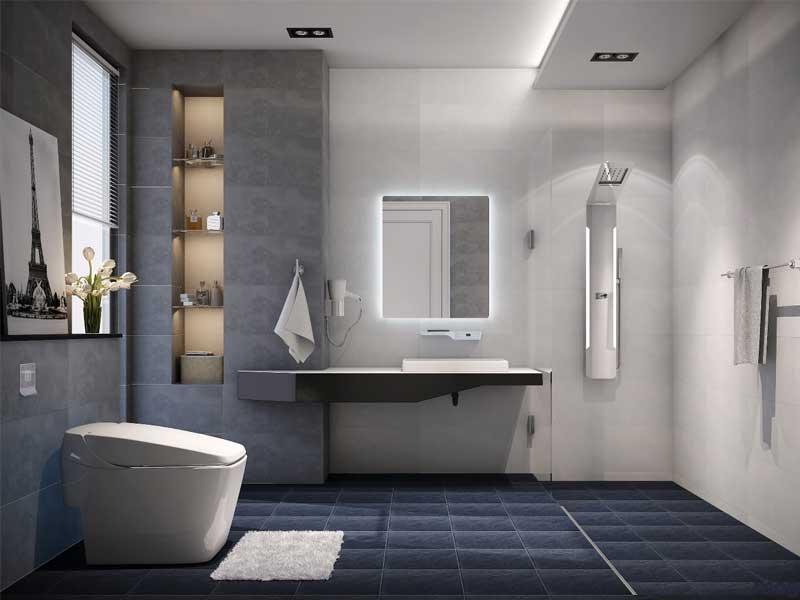 Bố trí đồ nội thất bên trong nhà vệ sinh