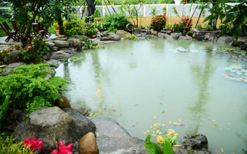 nhà vườn đẹp 17